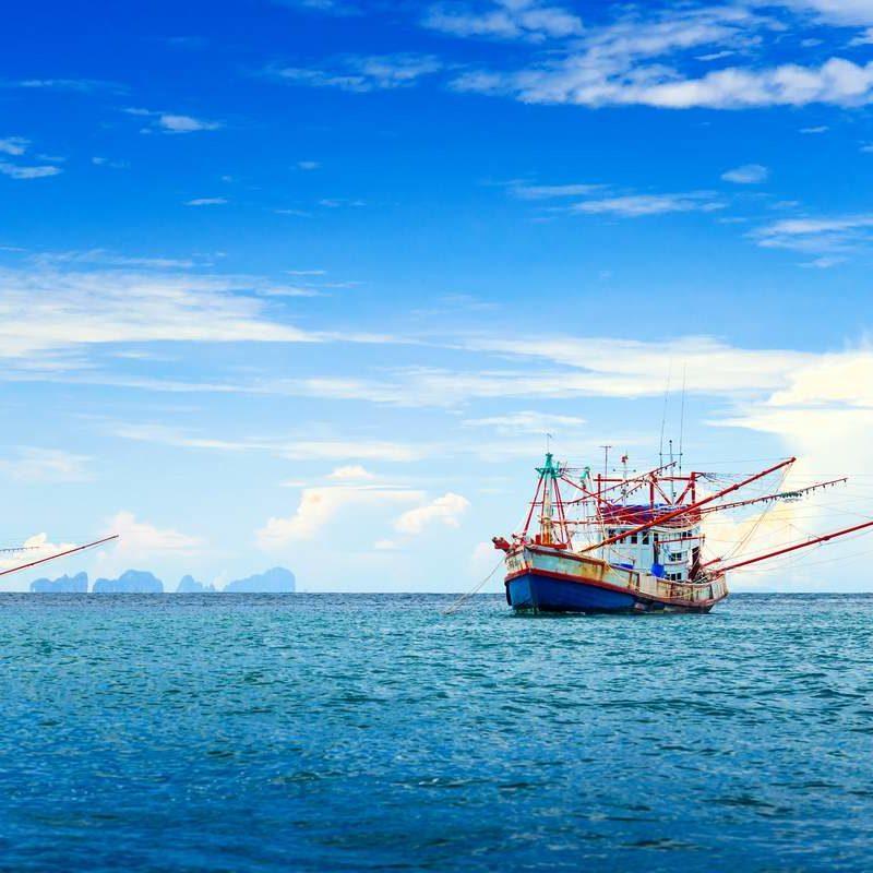 CombiTrade Tuna Trawler Supply Chain